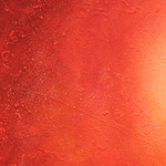 Pardilla (Clitocybe nebularis): Secretos y recetas