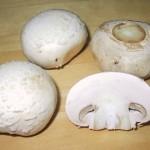 Champiñón (Agaricus Bisporus), secretos y recetas