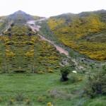 El espacio Montes Obarenes-San Zadornil de Burgos será declarado nuevo Parque Natural de la región de Burgos