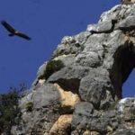 A ver aves, en los montes Obarenes