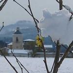 Valpuesta nevada
