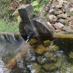 ¿Por qué se llama así la Fuente del Coño?