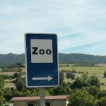 El Zoo de Tuesta